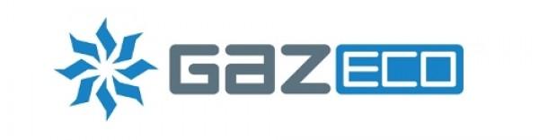 Выключатель ВПГ Economy W-6-C1, W-10-C1 (05-1011) Gazlux Gazeco / Газлюкс ( арт.: 3012014 )